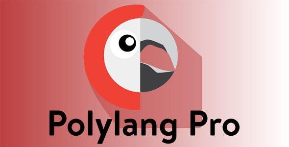 Polylang Pro plugin hỗ trợ web đa ngôn ngữ nhẹ số 1